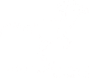 Red Raptor Page Logo